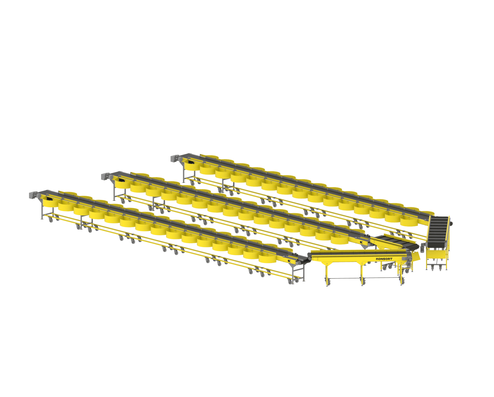 Line for sorting small cargo (up to 2kg)