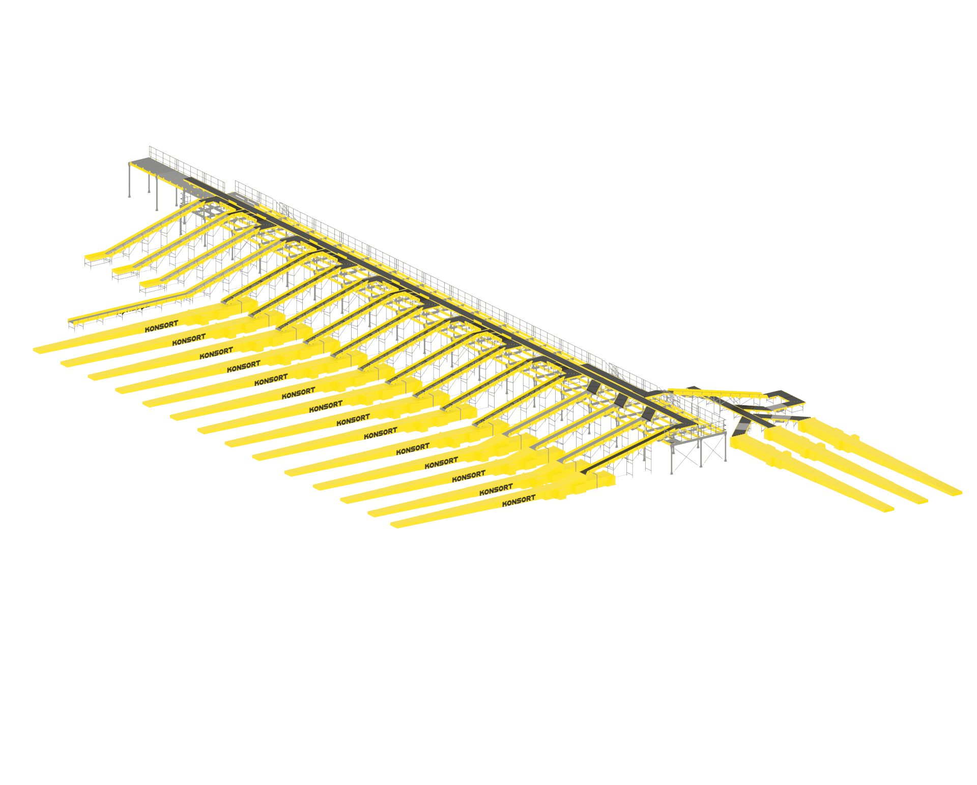 Cargo sorting line (from 2 to 60 kg)
